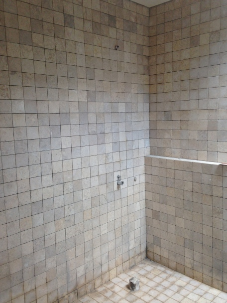 the guestroom shower